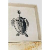 Настенный декор Nature Turtle