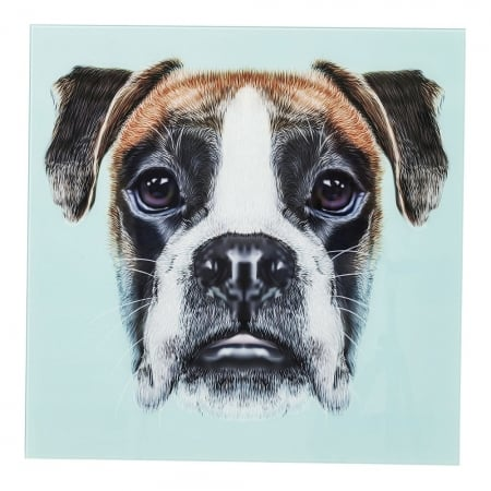Picture Glass Dog Face 60x60cm