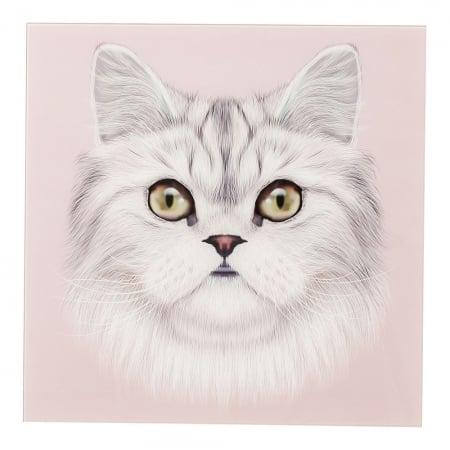 Picture Glass Cat Face 60x60cm