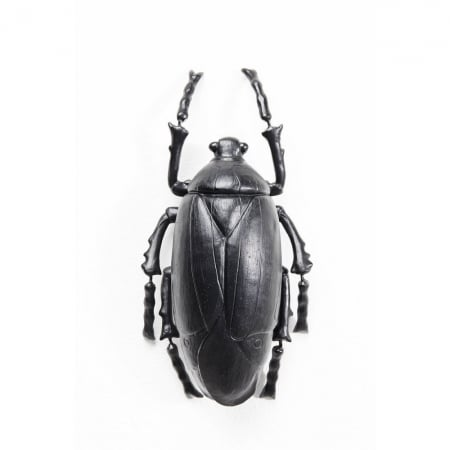 Wall Decoration Plant Beetle Matt Black