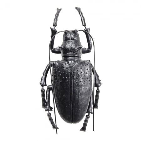 Wall Decoration Longicorn Beetle Matt Black