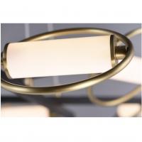 Люстра LED Aura Black D115 9P