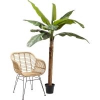 Декор Banana Tree 190cm