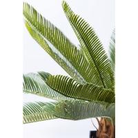 Декор Cycas Tree 78сm