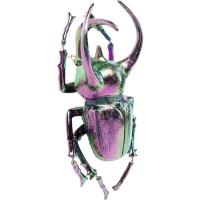 Настенный декор Atlas Beetle Rainbow